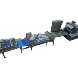 Лінія для виробництва млинців з начинкою SDTN